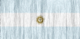 Argentina flag - small - style 2
