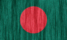 Bangladesh flag - medium - style 2