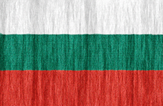 Bulgaria flag - medium - style 2