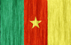 Cameroon free flag (small)