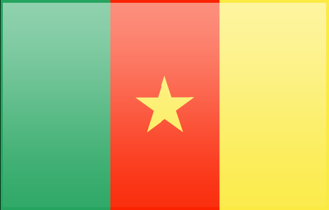 Cameroon free flag (large)