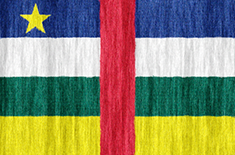 Central African Republic flag - medium - style 2