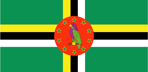 Dominica flag - large - style 1