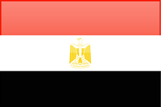 Egypt flag - medium - style 4