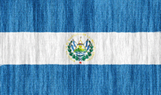 El Salvador flag - medium - style 2