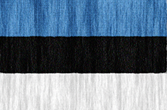 Estonia flag - medium - style 2