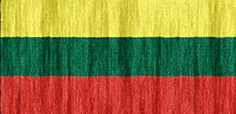 Lithuania flag - medium - style 2