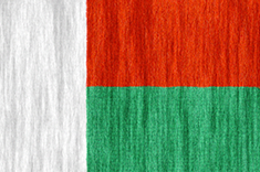 Madagascar flag - medium - style 2