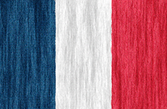 Martinique flag - medium - style 2