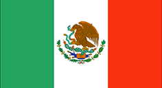 Mexico flag - medium - style 1