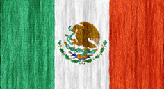 Mexico flag - medium - style 2