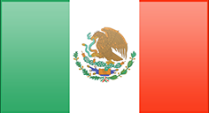 Mexico flag - medium - style 3
