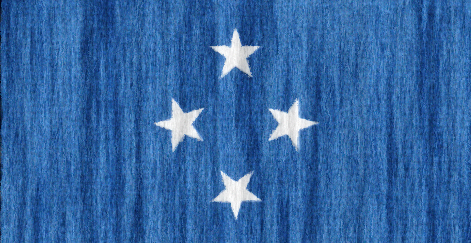 Micronesia flag - large - style 2