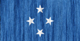 Micronesia flag - small - style 2