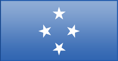 Micronesia flag - large - style 3