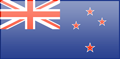 New Zealand flag - medium - style 3