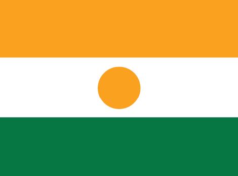 Niger free flag (large)