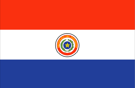 Paraguay flag - large - style 1