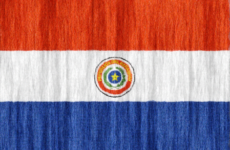 Paraguay flag - large - style 2