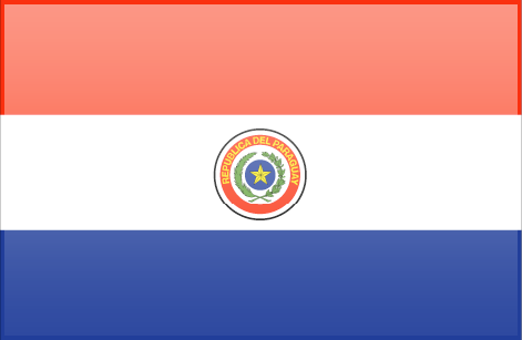 Paraguay flag - large - style 3