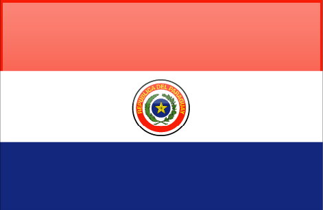 Paraguay flag - large - style 4