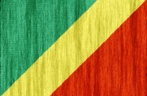 Republic of the Congo flag - large - style 2