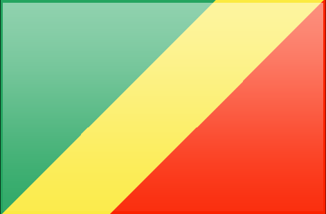 Republic of the Congo flag - large - style 3