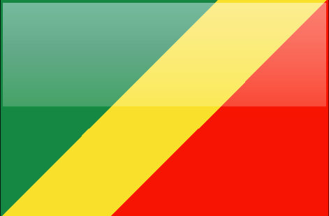 Republic of the Congo flag - large - style 4