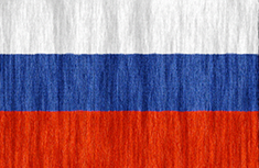 Russian Federation flag - medium - style 2