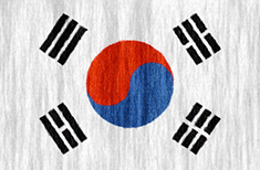 South Korea flag - medium - style 2