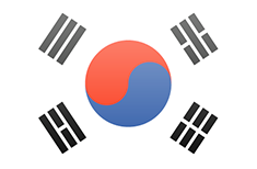 South Korea flag - medium - style 3