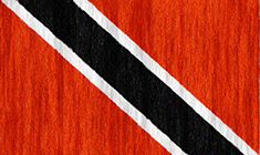 Trinidad and Tobago flag - medium - style 2