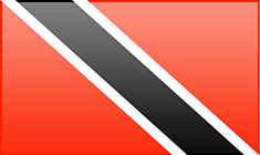 Trinidad and Tobago flag - medium - style 3