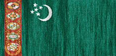 Turkmenistan flag - medium - style 2