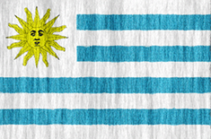 Uruguay free flag (medium)